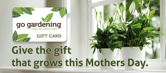 Go Gardening this Mother's Day